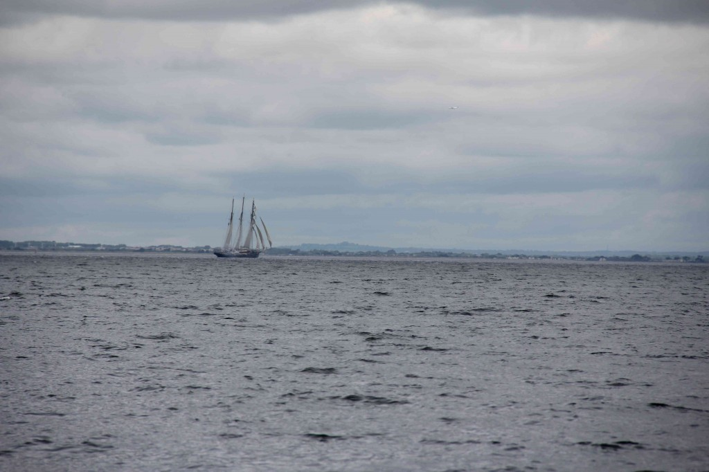 Tall ships in Dublin Bay
